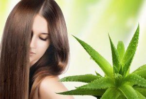 Использование растений для ухода за волосами